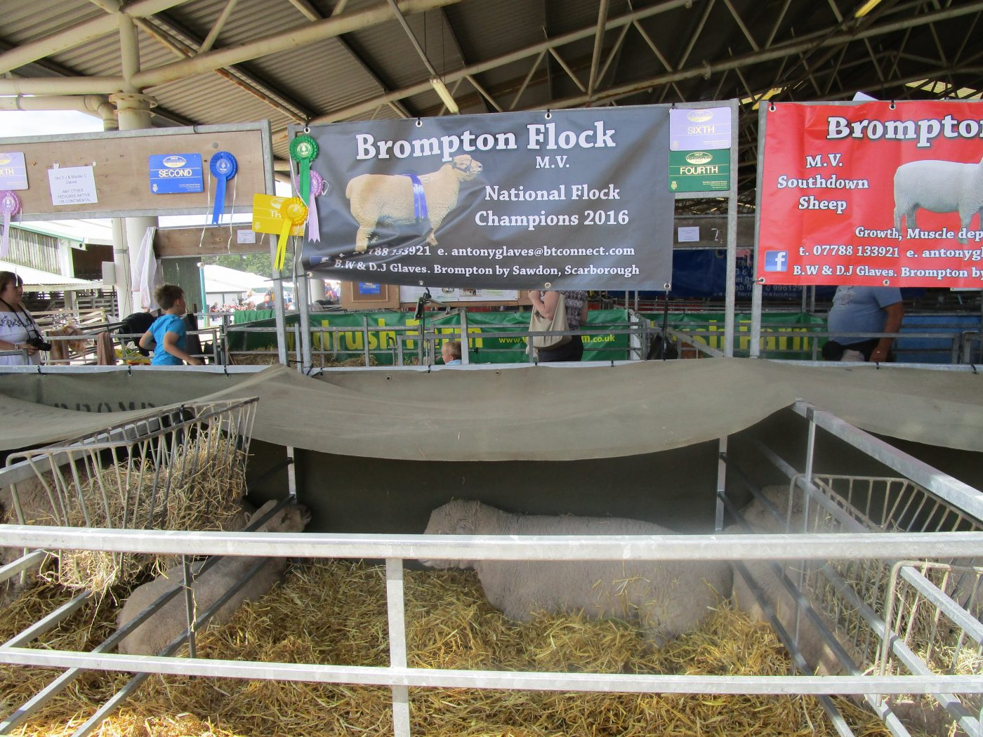 A Virtual Visit to the Great Yorkshire Show